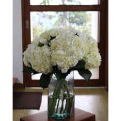 White Hydrangea - Extra